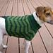 Zigzag Dog Sweater pattern
