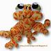 Sacha de Salamander pattern