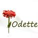 Odette pattern