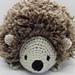 Fluffy Hedgehog Amigurumi pattern