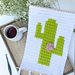 Cactus and Flower Wall Hanging pattern