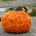 Autumn Spice Pumpkin pattern