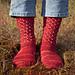 Cat's Sweet Tomato Heel Socks pattern