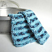 By the Ocean Dish Cloth pattern