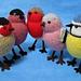 Garden Birds pattern