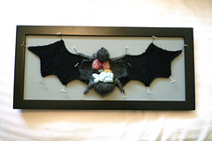 Knitted, dissected bat specimen