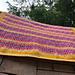 Volunteer Blanket pattern