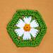 Daisy Hexagon pattern