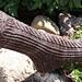 Mudslide Socks pattern