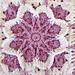 Fall Blossom pattern