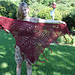 Saffron (Our Mrs. Reynolds) Shawl pattern