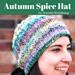 Autumn Spice pattern