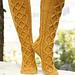 143-8 Golden Socks pattern
