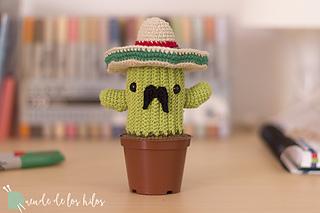 15 DIY Cactus Crochet Patterns & Tutorials   Kaktus häkeln ...   213x320