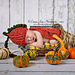 Pumpkin Patch - Newborn Prop Cape Set pattern