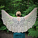 Lace Wing Shawl pattern