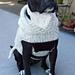 Pitty Perfect Sweater pattern