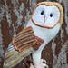 Barn owl CAL | Kerkuil CAL pattern