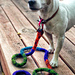 Toby's Felted Dog Leash pattern