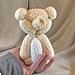 Balloon Teddy Bear Amigurumi pattern