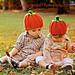 Ribbed Pumpkin Beanie pattern