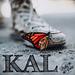 Monarch Butterfly KAL pattern