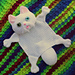 White Persian Kitty Buddy pattern