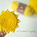 The Sun's Out! Dish Scrubby pattern