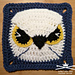 Midnight Eagle Owl Afghan Square pattern