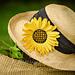 Sunflower Brooch pattern