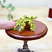 Miniature Potted Plant 1:12 pattern
