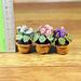 Violet flower pot pattern