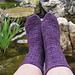 Wild Iris Socks pattern