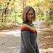 Fall Stripes Sweater pattern