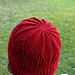 Fagales Hat pattern