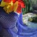 Pinot Noir shawl pattern