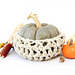 Fall Pumpkin Cozy pattern