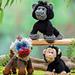 Primates (Gorilla, Baboon, and Chimpanzee) pattern