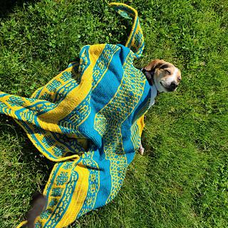 Large Shawl in Whimzee Stitches Yarn Co. Yarns