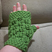 Flowers & Moss Mitts pattern