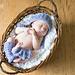 Bonnie Bell Baby Legwarmers pattern