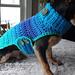Chihuahua Sweater pattern