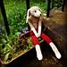 Respectable Mr. Rabbit pattern