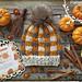 Pumpkin Pie Super Bulky Hat pattern