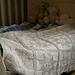 Sampler Blanket pattern