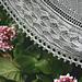 Monarch Butterfly Shawl pattern