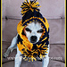 Sports Team Hooded Dog Snood pattern