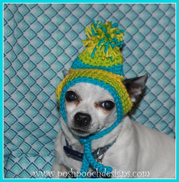 Ravelry Dog Beanies With Pompom