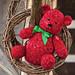 Ruby Bear pattern