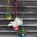 Oui Hanging Planter pattern